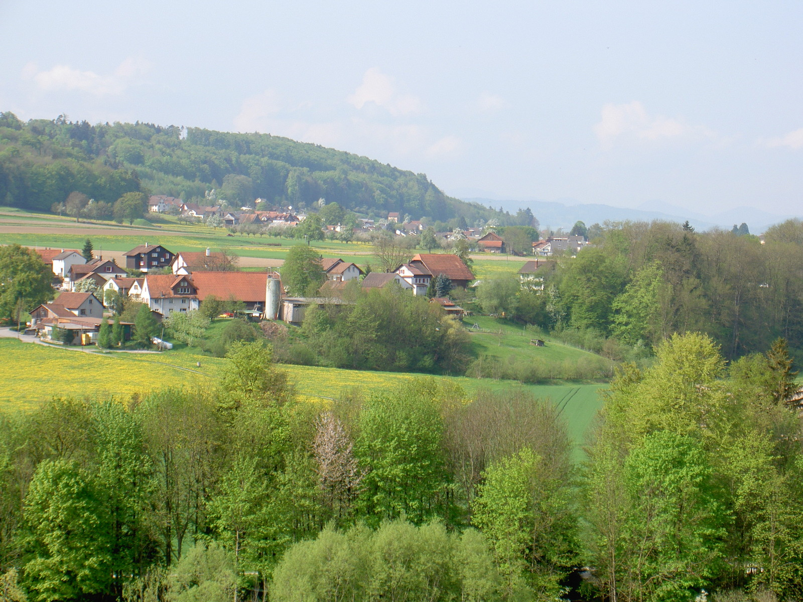 View to Eberswil